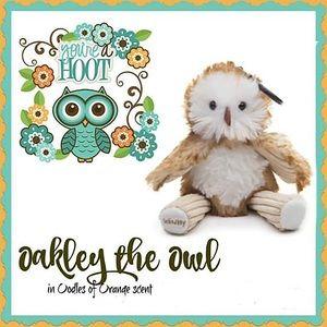 *Brand New* SCENTSY Oakley the Owl BUDDY CLIP 🦉